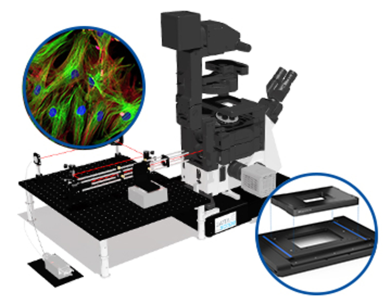 positioning solutions for total internal reflection fluorescence microscopy  (tirfm)